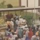 Samelan 1984