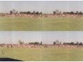 samelan-1993-27